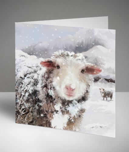 Fergus the Sheep Returns Christmas Cards, Pack of 10