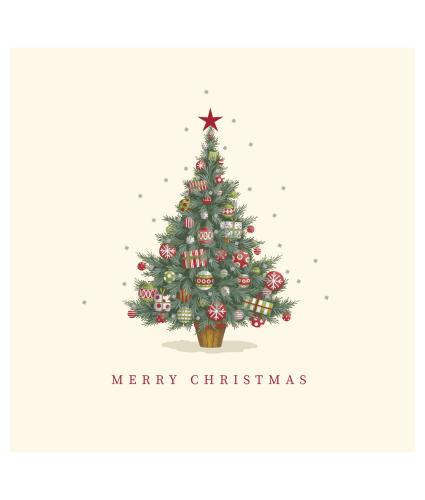 Twinkly Tree Christmas Cards - Pack of 10