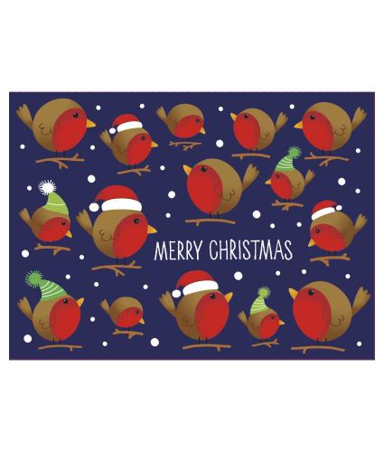 Bright Robin Duo Christmas Cards - design 1