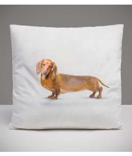 Dexter the Dog Cushion