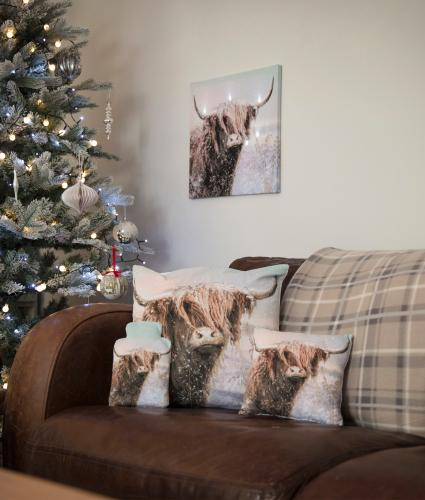 Archie the Highland Cow Homeware Set