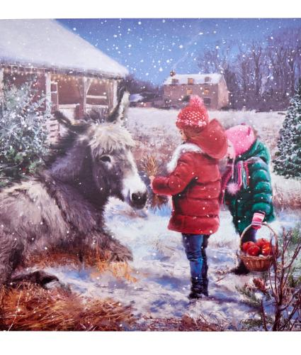 Dorothy The Donkey Christmas Cards - Pack of 10
