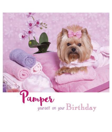 Suki at the Salon Birthday Card