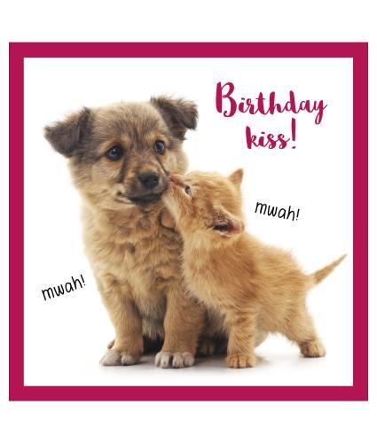 Birthday Kiss Birthday Card