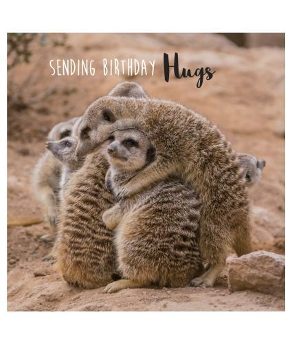 Birthday Snuggles Birthday Card