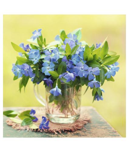 Blue Flowers In Jug Greetings Card
