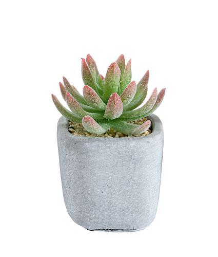 Mini Artificial Succulent Pot