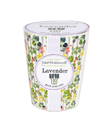 Grow Your Own Lavender Pot