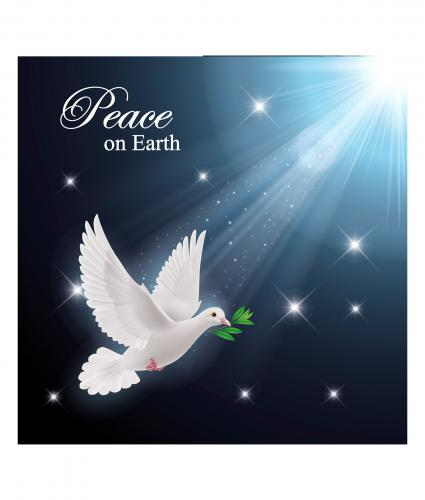 stunning dove cancer research uk christmas card