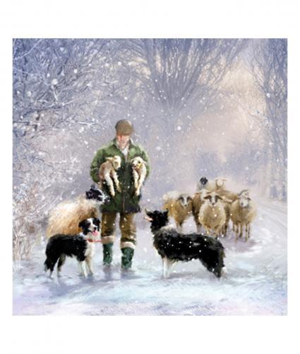 walking home cancer research uk christmas card