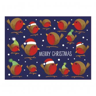 Bright Robin Duo Christmas Cards - Pack of 16 cards in 2 designs