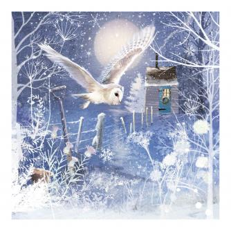 Flight of the Owl Christmas Cards - Pack of 10