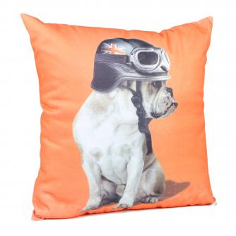 Captain Britain Bulldog Orange Cushion, Cancer Research UK