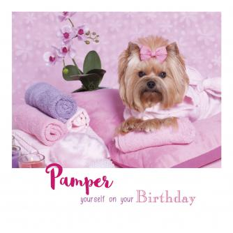Suki at the Salon Birthday Card
