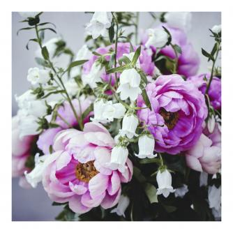 Pink and White Florals Greetings Card