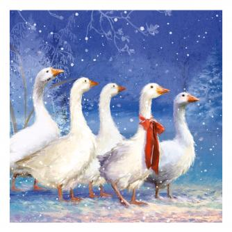 winter geese cancer research uk christmas card