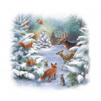 woodland christmas cancer research uk christmas card